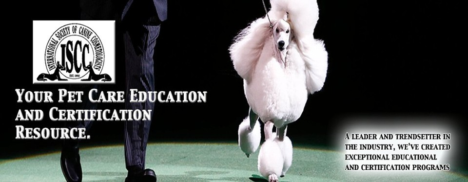 iscc education, dog grooming certifications, pet styling | garland, tx